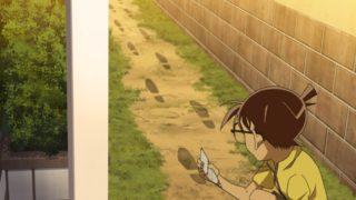 Detektiv-Conan-Episode-1013-2