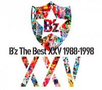 bzxxv1988-1998_jk